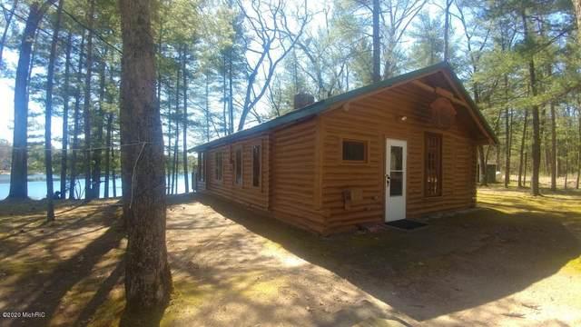 11234 S L-Lakes View Drive, Baldwin, MI 49304 (MLS #20014850) :: Deb Stevenson Group - Greenridge Realty
