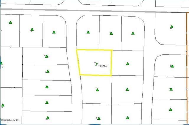 48265 Silver Oaks West, Mattawan, MI 49071 (MLS #20015140) :: Ginger Baxter Group
