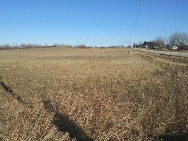21752 24th Avenue Lot A, Conklin, MI 49403 (MLS #20015741) :: JH Realty Partners