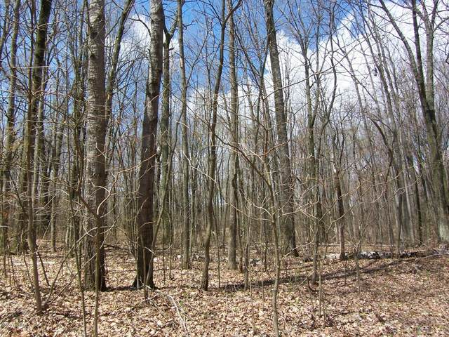 Lot 251 Lucerne Dr, Reed City, MI 49677 (MLS #20016645) :: Deb Stevenson Group - Greenridge Realty