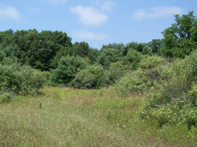 40 acres Monroe Road, Pentwater, MI 49449 (MLS #20018328) :: Jennifer Lane-Alwan