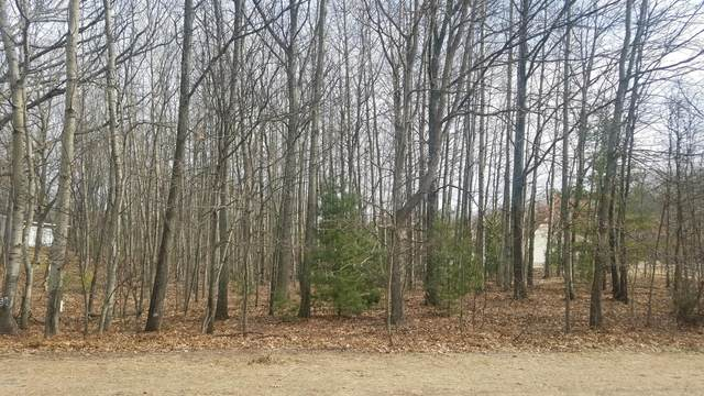 Lot 59 Northern Lights Road, Mears, MI 49436 (MLS #20018372) :: JH Realty Partners