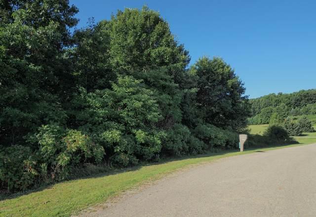 26701 Primrose Path, Lawton, MI 49065 (MLS #20018797) :: Jennifer Lane-Alwan