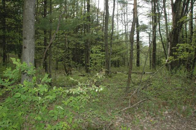 Lot 10 Karley Court Court, Luther, MI 49656 (MLS #20018868) :: JH Realty Partners
