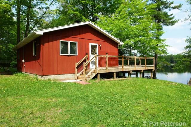 16552 Lonesome Trail, Leroy, MI 49655 (MLS #20019220) :: Deb Stevenson Group - Greenridge Realty