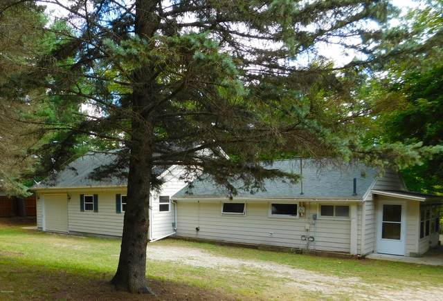 131 E Sauble Drive, Free Soil, MI 49411 (MLS #20019730) :: Deb Stevenson Group - Greenridge Realty