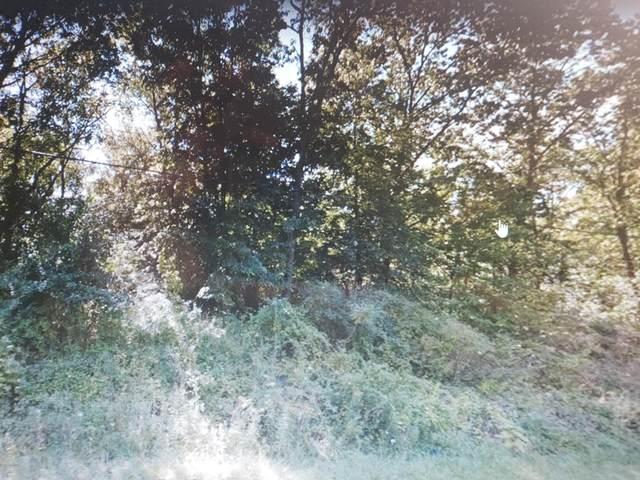 Lot A Wood Road, Sheridan, MI 48884 (MLS #20019987) :: CENTURY 21 C. Howard