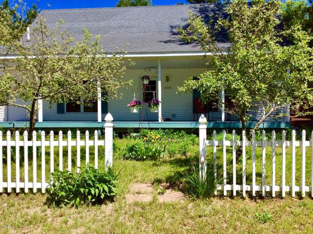 14792 Louhi Street, Kaleva, MI 49645 (MLS #20020117) :: CENTURY 21 C. Howard