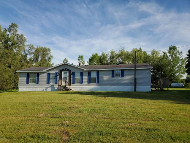 9913 Button Road, Belding, MI 48809 (MLS #20020124) :: Jennifer Lane-Alwan