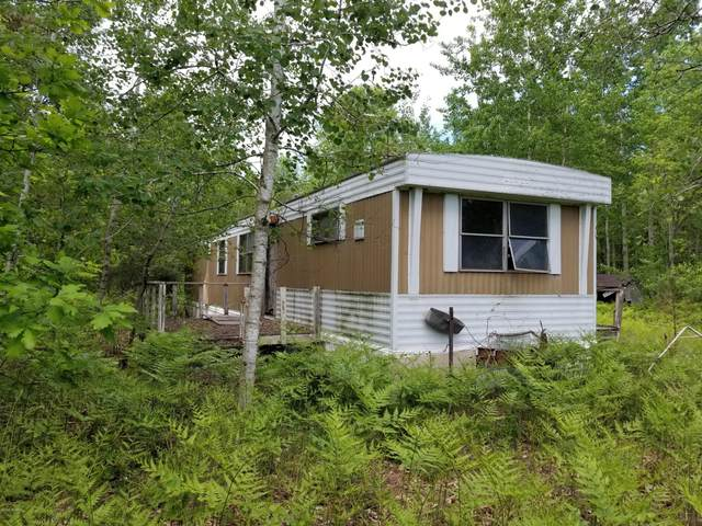 12578 S Oak Avenue, Grant, MI 49327 (MLS #20020679) :: Jennifer Lane-Alwan