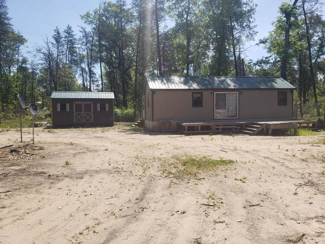 11407 N Forman Road, Irons, MI 49644 (MLS #20020757) :: Ron Ekema Team