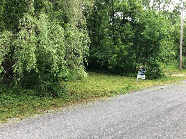 Lot 91 N New North Dexter Street, Ionia, MI 48846 (MLS #20020770) :: Jennifer Lane-Alwan