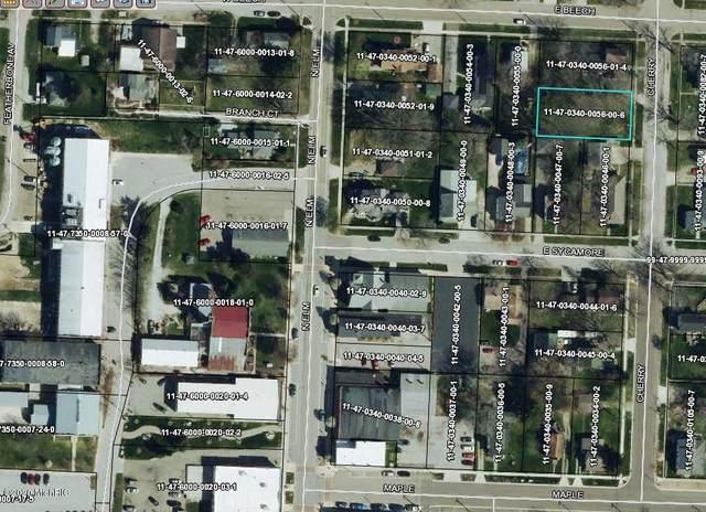 205 Cherry Street, Three Oaks, MI 49128 (MLS #20021255) :: Ginger Baxter Group