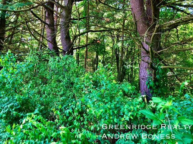 Parcel 20 Longpond Green Lane, Middleville, MI 49333 (MLS #20021683) :: Jennifer Lane-Alwan