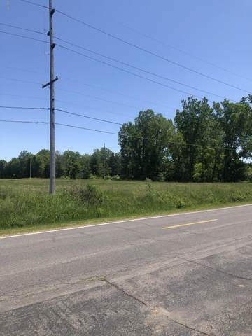 Lot 4 California, Bridgman, MI 49106 (MLS #20022215) :: Deb Stevenson Group - Greenridge Realty