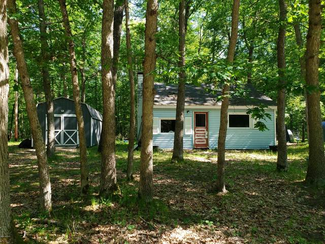 4784 W 10 1/2 Mile Road, Irons, MI 49644 (MLS #20022439) :: JH Realty Partners