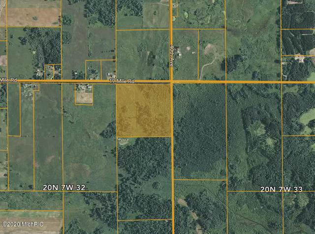 4025 19 Mile Road, Marion, MI 49665 (MLS #20023672) :: JH Realty Partners