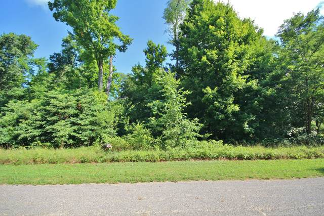 Lot 8 Reagan Drive, Three Rivers, MI 49093 (MLS #20023789) :: CENTURY 21 C. Howard