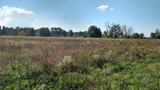 6601 72nd Avenue Parcel ''B'', Hudsonville, MI 49426 (MLS #20023845) :: CENTURY 21 C. Howard