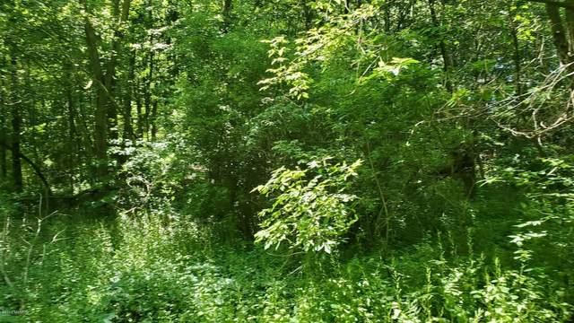 11 Mullen Ridge Drive, Delton, MI 49046 (MLS #20024138) :: Jennifer Lane-Alwan