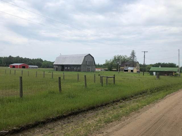 22097 Dorothy Road, Wellston, MI 49689 (MLS #20024305) :: Deb Stevenson Group - Greenridge Realty