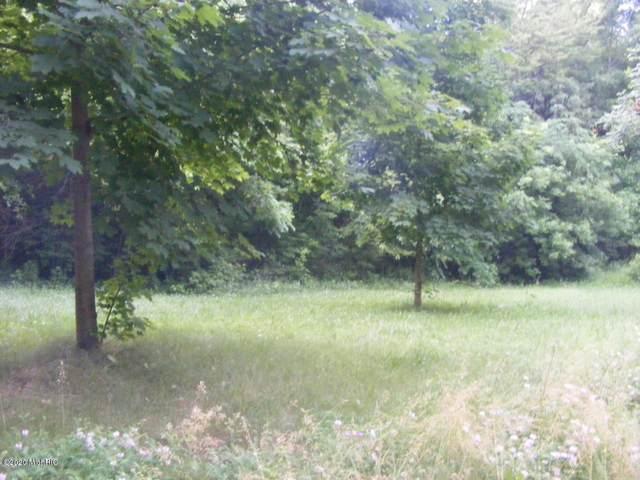 lots Donna Drive, Lake Odessa, MI 48849 (MLS #20024503) :: Jennifer Lane-Alwan
