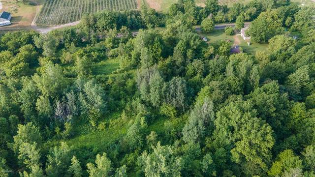 Parcel  A 24th Avenue, Grand Junction, MI 49056 (MLS #20024793) :: Keller Williams RiverTown