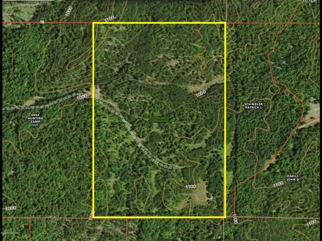5688 W Tower Two Trail, Curran, MI 48728 (MLS #20027061) :: Keller Williams RiverTown