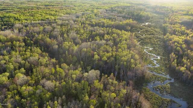 V/L-86 Acres N Fork Road, Ocqueoc, MI 49759 (MLS #20027091) :: Deb Stevenson Group - Greenridge Realty