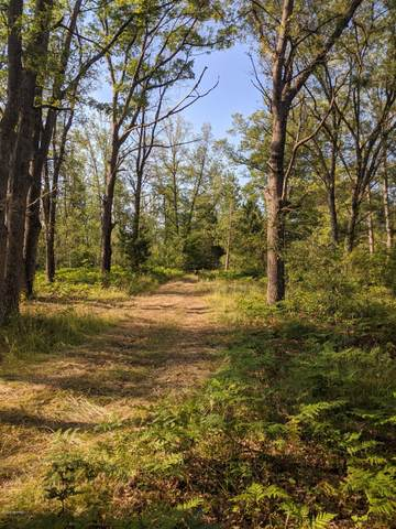 80 Acres Yellow Gate Trail, Hubbard Lake, MI 49747 (MLS #20027135) :: CENTURY 21 C. Howard