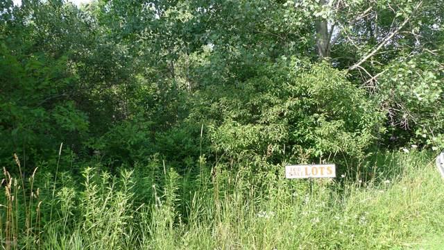 261 E Maple Street NE, Cedar Springs, MI 49319 (MLS #20027357) :: Ginger Baxter Group
