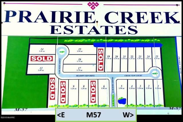 8190 Timber Creek Drive, Fenwick, MI 48834 (MLS #20027550) :: Ron Ekema Team