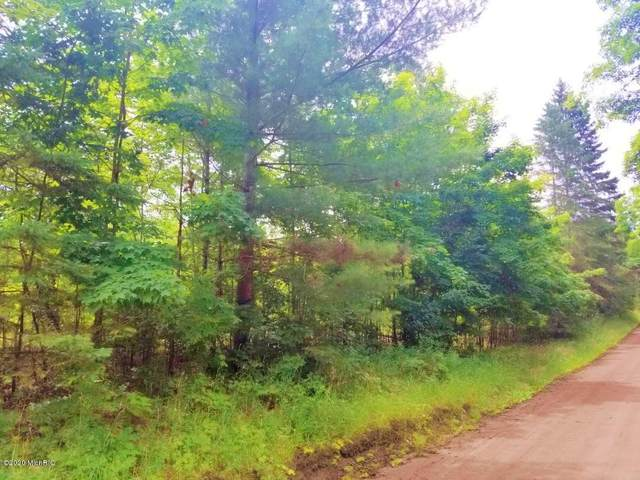 7 Mile Road, Luther, MI 49656 (MLS #20028058) :: Deb Stevenson Group - Greenridge Realty
