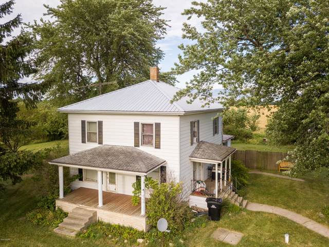 6291 S State Road, Ionia, MI 48846 (MLS #20028662) :: Your Kzoo Agents
