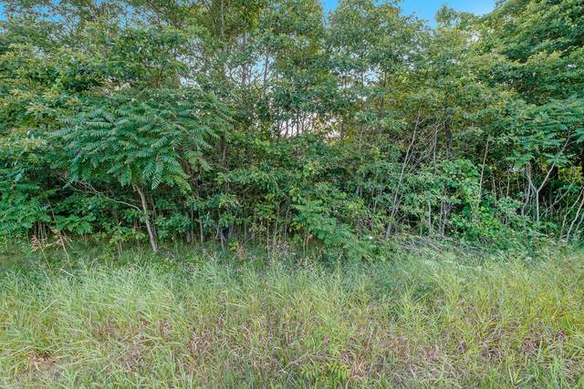 V/L 62nd Street, South Haven, MI 49090 (MLS #20028771) :: JH Realty Partners
