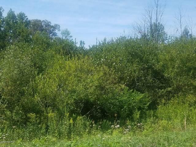 Lot 11 Walter Drive, Rothbury, MI 49452 (MLS #20029122) :: CENTURY 21 C. Howard