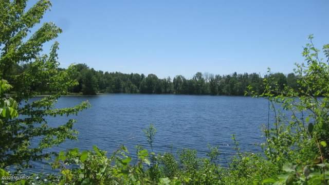 Lakeridge Lane, Allegan, MI 49010 (MLS #20029404) :: Jennifer Lane-Alwan