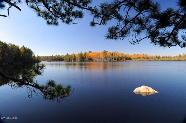 0000 Goose Lake, Marquette, MI 49855 (MLS #20029503) :: Ron Ekema Team