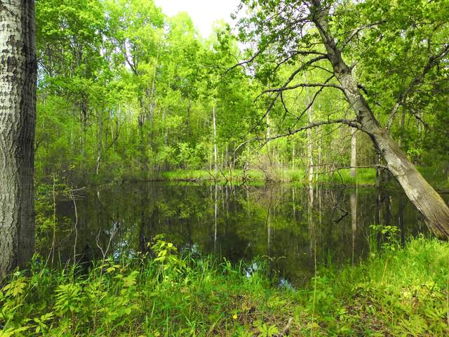 40 Acres 9 Mile Road, Lake City, MI 49651 (MLS #20030587) :: Ginger Baxter Group
