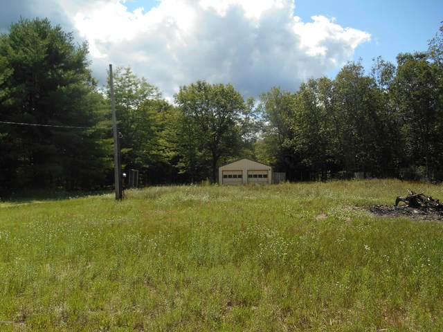 23451 Cutler Road, Newaygo, MI 49337 (MLS #20031384) :: Ginger Baxter Group