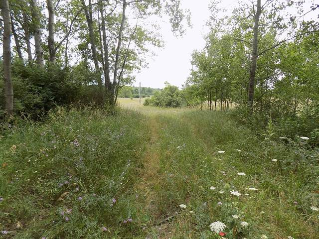 0 Roosevelt Rd., Remus, MI 49340 (MLS #20031404) :: JH Realty Partners