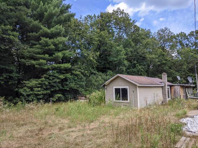 1774 48th Street, Fennville, MI 49408 (MLS #20031453) :: Ron Ekema Team