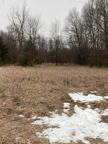 55-Acres 117th Avenue, Fennville, MI 49408 (MLS #20032128) :: Ron Ekema Team