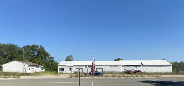 11037 E Howard City-Edmore, Riverdale, MI 48877 (MLS #20032697) :: Jennifer Lane-Alwan