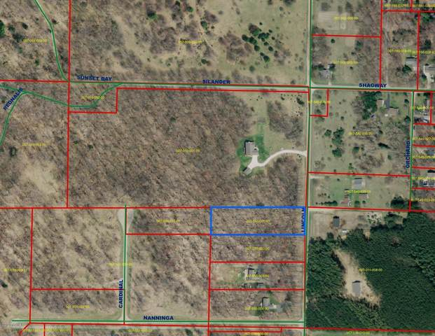 N Lincoln Road Lot #1, Ludington, MI 49431 (MLS #20032744) :: Deb Stevenson Group - Greenridge Realty