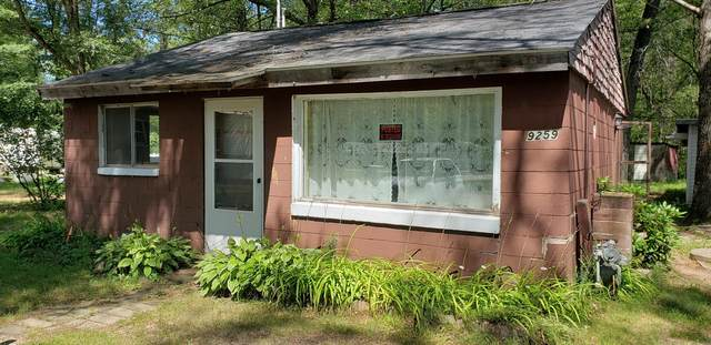9259 E 36th St Street, Newaygo, MI 49337 (MLS #20033446) :: Deb Stevenson Group - Greenridge Realty