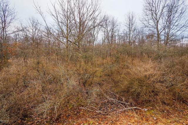 38th Avenue, Paw Paw, MI 49079 (MLS #20033516) :: Ginger Baxter Group