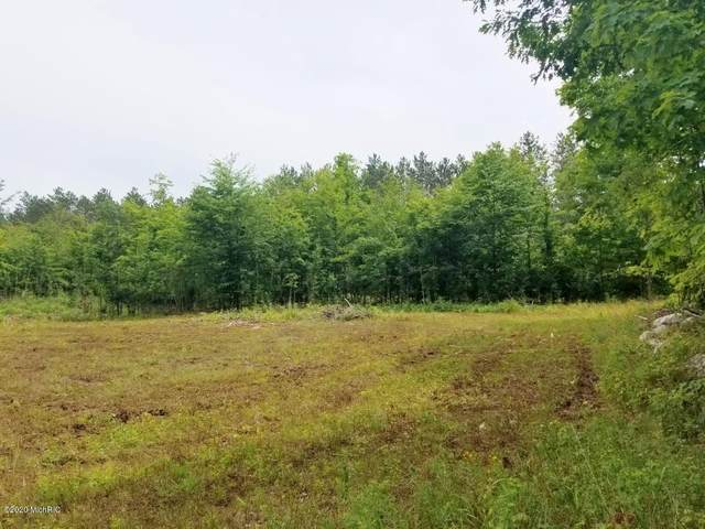 Par 2 7 Mile Road, Luther, MI 49656 (MLS #20033555) :: Deb Stevenson Group - Greenridge Realty