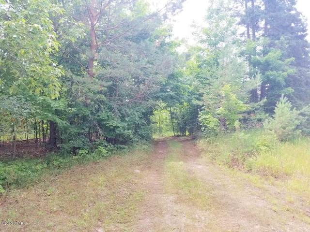 Par 1 7 Mile Road, Luther, MI 49656 (MLS #20033563) :: Deb Stevenson Group - Greenridge Realty