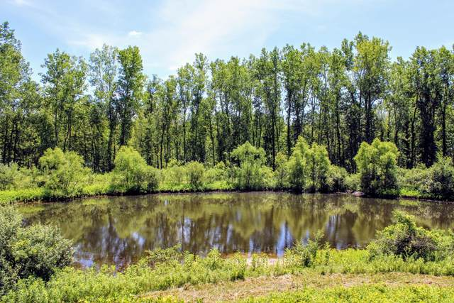 Vl 44th Ave Avenue, Paw Paw, MI 49079 (MLS #20033812) :: JH Realty Partners